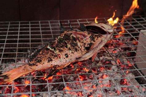 Barbecued red emperor with finger lime, ginger and