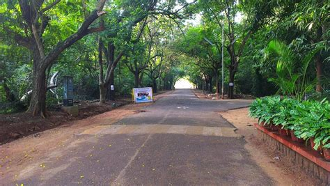 The Best Running Routes in Chennai