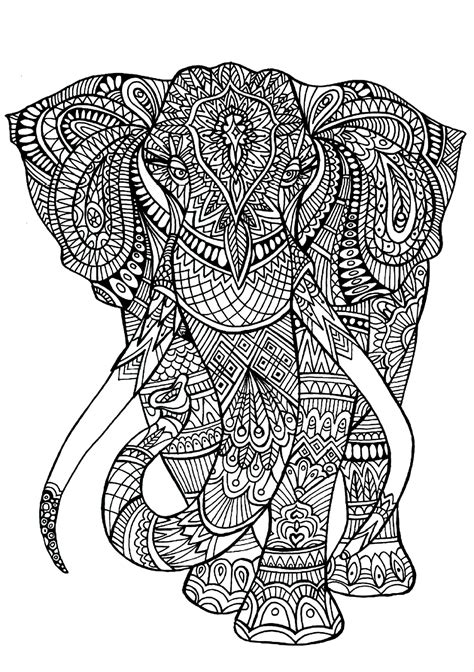 Elephant Coloring Pages for Adults - Best Coloring Pages