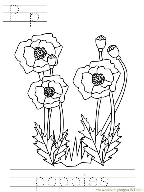 Veteran's Daybposter Poppies Coloring Page - Free Holidays