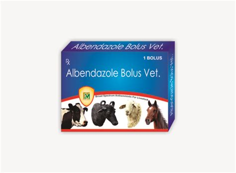 Veterinary Norfloxacin and Tinidazole Bolus Manufacturer