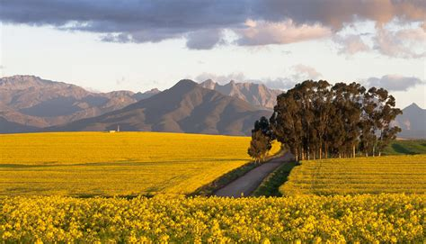 Swartland, South Africa | Perfect Hideaways