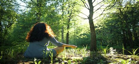 Forest Bathing - the latest travel experience you didn't