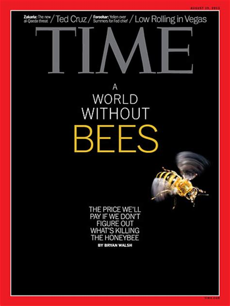 TIME Magazine Cover: A World Without Bees - Aug