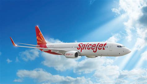 SpiceJet adds Adampur as its sixth destination under UDAN